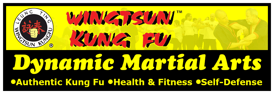 Dynamic Martial Arts header image