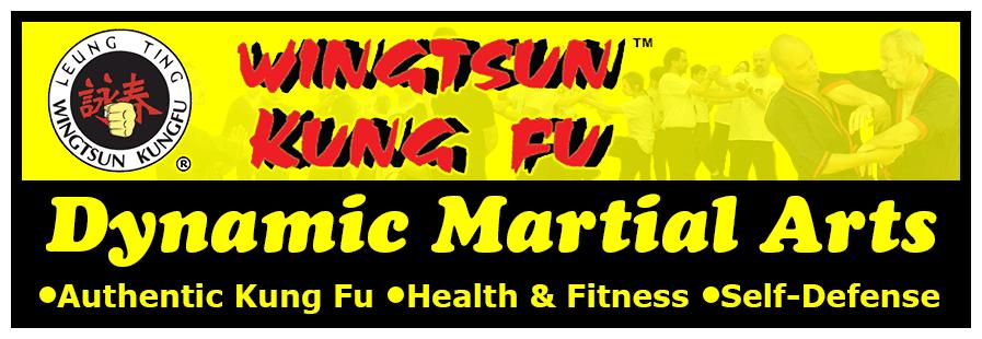 Dynamic Martial Arts header image